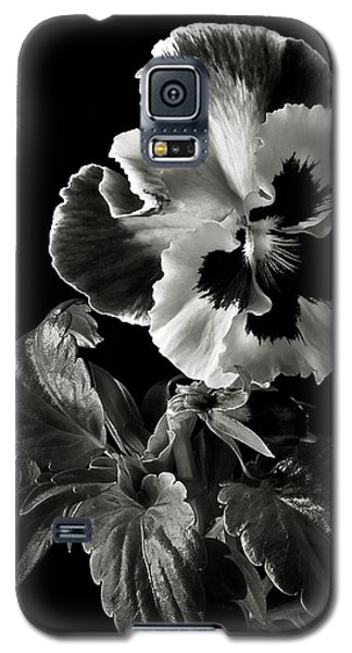 Pansy In Black And White Galaxy S5 Case