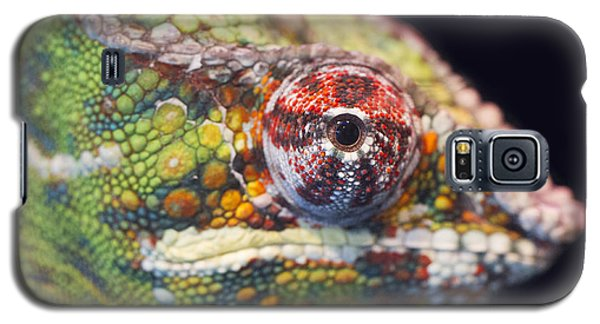 Galaxy S5 Case featuring the photograph Panther Chameleon  by Nathan Rupert