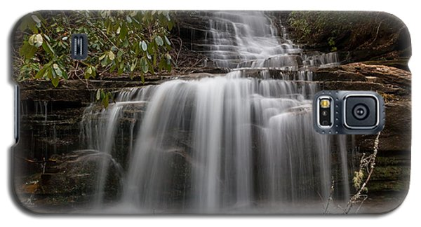 Panther Falls Galaxy S5 Case