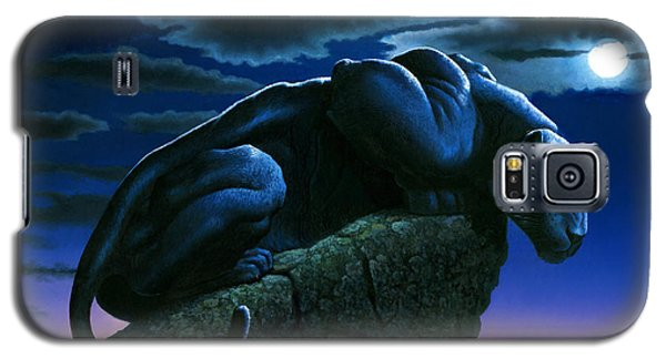 Panther On Rock Galaxy S5 Case