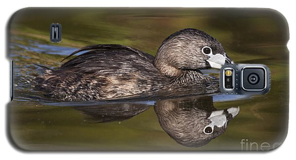 Papago Park Grebe Galaxy S5 Case by Ruth Jolly
