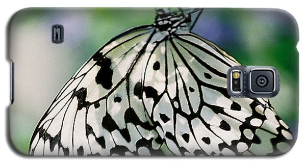 Galaxy S5 Case featuring the photograph Paper Rice Butterfly by Donna Brown