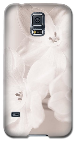 Paper Whites II Galaxy S5 Case by Tamara Becker