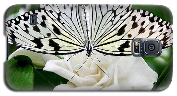 Paperkite On Gardenia Galaxy S5 Case by Kristin Elmquist
