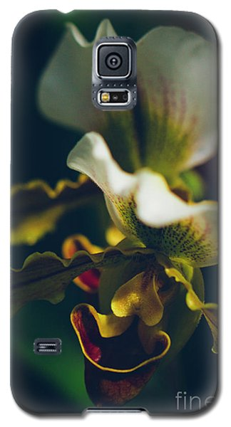 Galaxy S5 Case featuring the photograph Paphiopedilum Villosum Orchid Lady Slipper by Sharon Mau