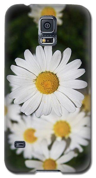 Paquerette Galaxy S5 Case