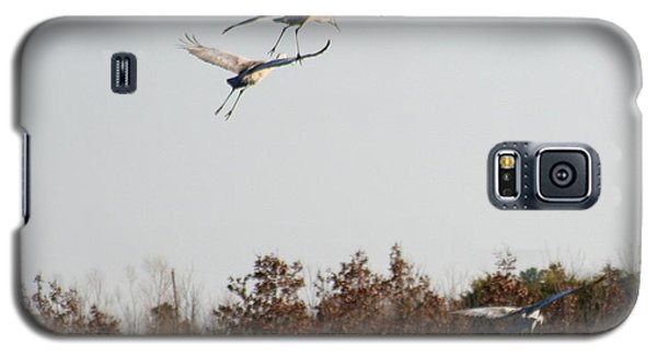 Galaxy S5 Case featuring the photograph Parachuting Cranes by Diane Merkle