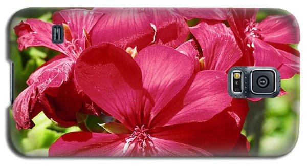 Paradise Bloom Galaxy S5 Case