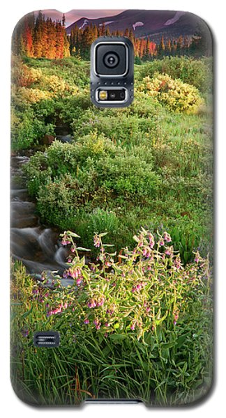 Galaxy S5 Case featuring the photograph Paradise  by John De Bord