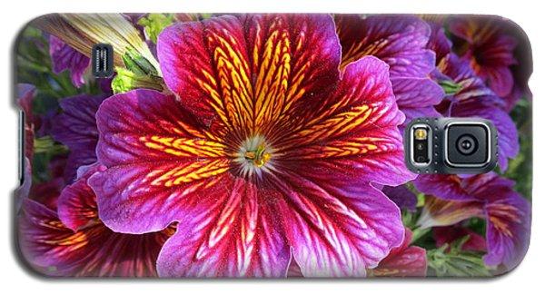 Paragon Galaxy S5 Case