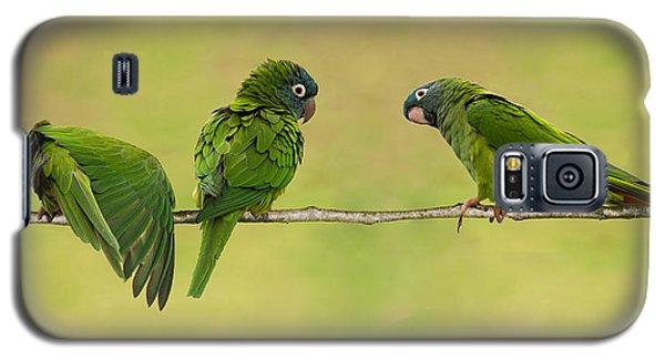 Parakeet Trio Galaxy S5 Case