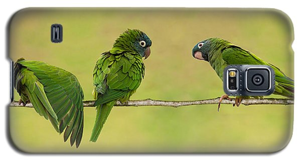 Parakeet Trio Galaxy S5 Case