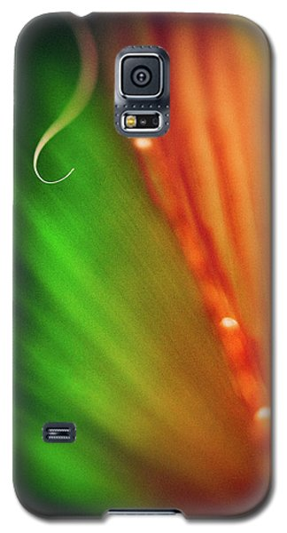 Parallel Botany #5199 Galaxy S5 Case