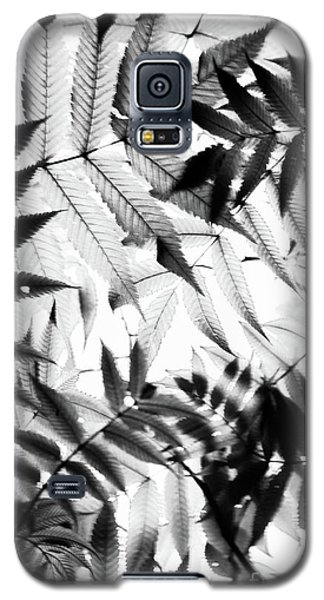 Parallel Botany #5229 Galaxy S5 Case