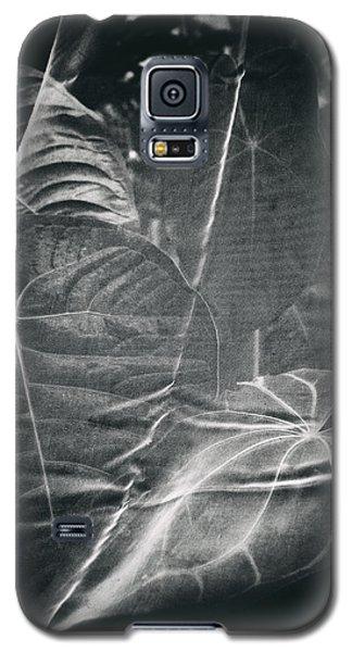 Parallel Botany #5266 Galaxy S5 Case