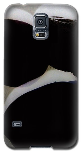 Galaxy S5 Case - Paranormale Stones by Orphelia Aristal