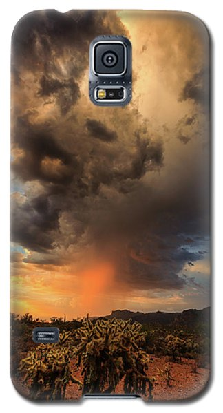 Parched Galaxy S5 Case