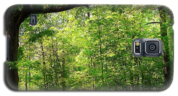 Paris Mountain State Park South Carolina Galaxy S5 Case by Bellesouth Studio