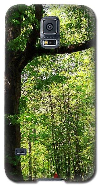 Paris Mountain State Park South Carolina Galaxy S5 Case