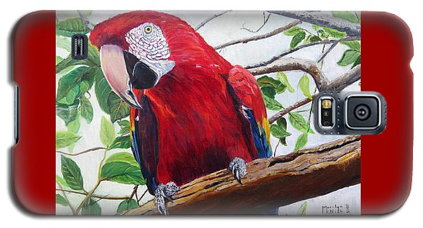 Parrot Portrait Galaxy S5 Case by Marilyn  McNish