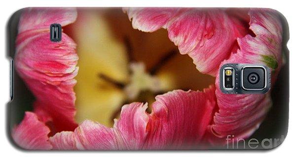 Galaxy S5 Case featuring the photograph Parrot Tulip by Jolanta Anna Karolska