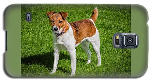 Parson Jack Russell Galaxy S5 Case