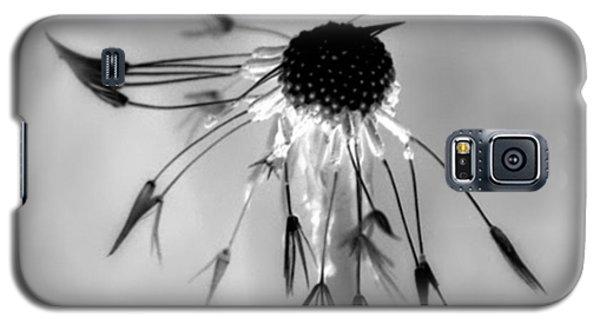 Partial Dandy Galaxy S5 Case