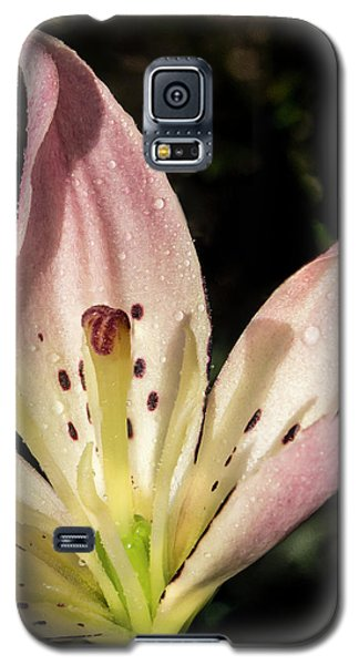 Galaxy S5 Case featuring the photograph Partitioned Lily by Jean Noren