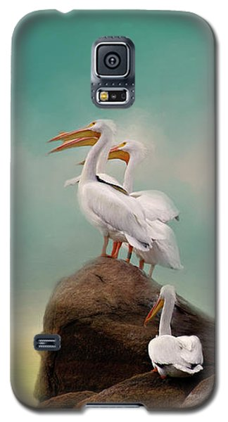 Party On The Rocks Galaxy S5 Case by Lana Trussell