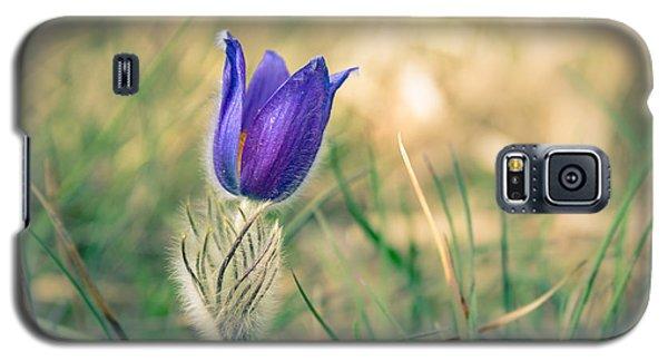 Pasque Flower Galaxy S5 Case