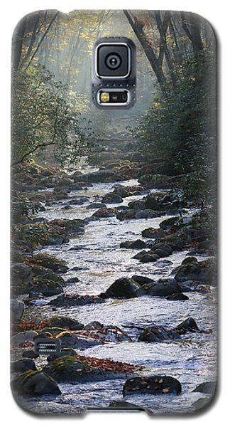 Passage Of Time Galaxy S5 Case by Lamarre Labadie