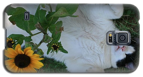 Galaxy S5 Case featuring the photograph Passed Out Under The Daisies by Marna Edwards Flavell