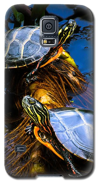 Passing The Day With A Friend Galaxy S5 Case by Bob Orsillo