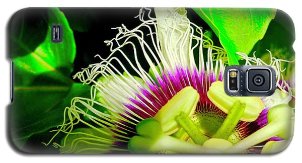 Passion Flower 2 Reflecting Galaxy S5 Case