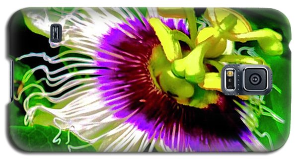 Passion Flower 3 Uplift Galaxy S5 Case