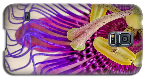 Galaxy S5 Case featuring the photograph Passion Flower Squared by TK Goforth