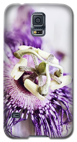 Galaxy S5 Case featuring the photograph Passion Flower by Stephanie Frey