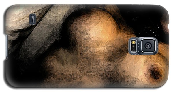 Passion Galaxy S5 Case by Iconic Images Art Gallery David Pucciarelli