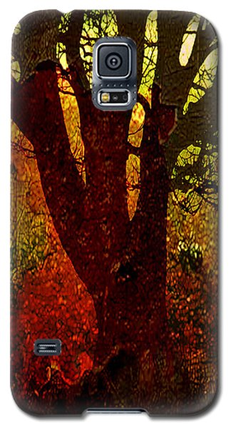 Past Life Galaxy S5 Case