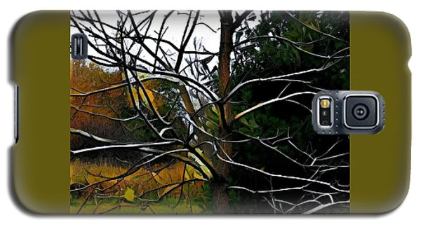 Galaxy S5 Case featuring the photograph Past The Branches by Diane Miller