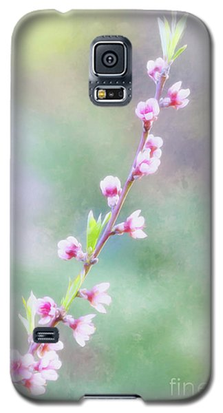 Pastel Painted Peach Blossoms Galaxy S5 Case