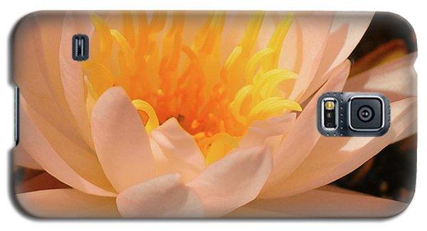 Pastel Pleasures  Galaxy S5 Case