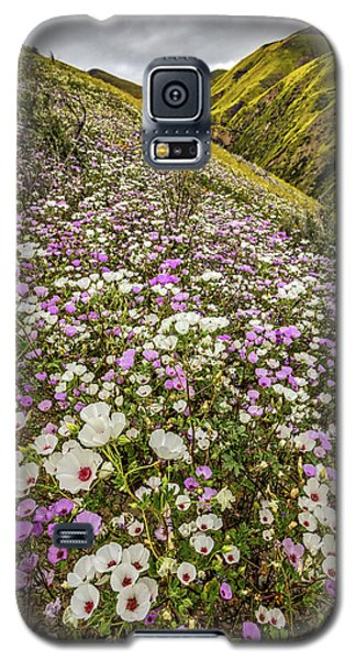 Galaxy S5 Case featuring the photograph Pastel Super Bloom by Peter Tellone