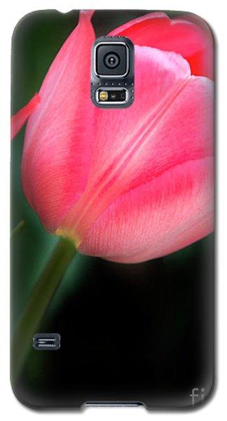 Pastel Tulips Galaxy S5 Case