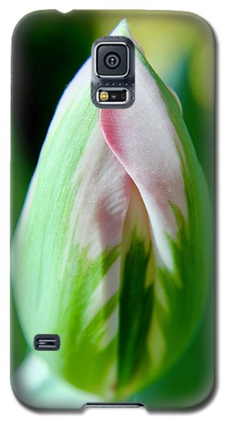 Pastel Tulip Galaxy S5 Case