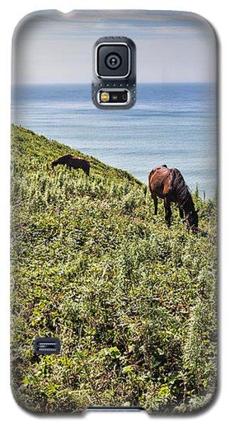 Pasture #2746 Galaxy S5 Case