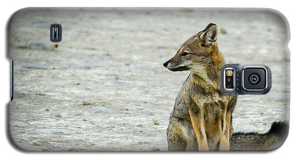 Patagonia Fox - Argentina Galaxy S5 Case