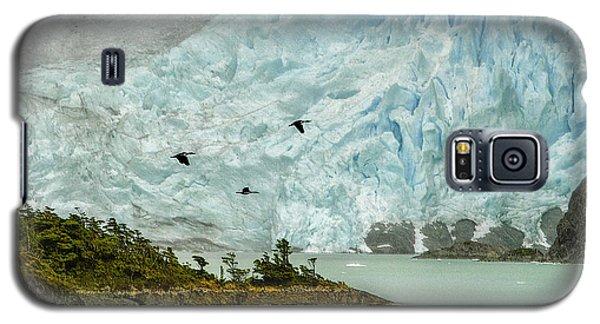 Patagonia Glacier Galaxy S5 Case by Alan Toepfer