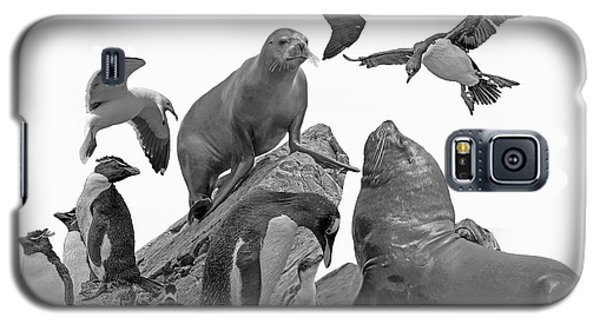 Patagonian Wildlife Galaxy S5 Case
