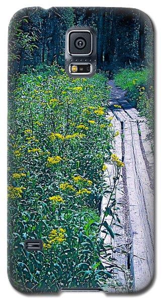 Path 4 Galaxy S5 Case